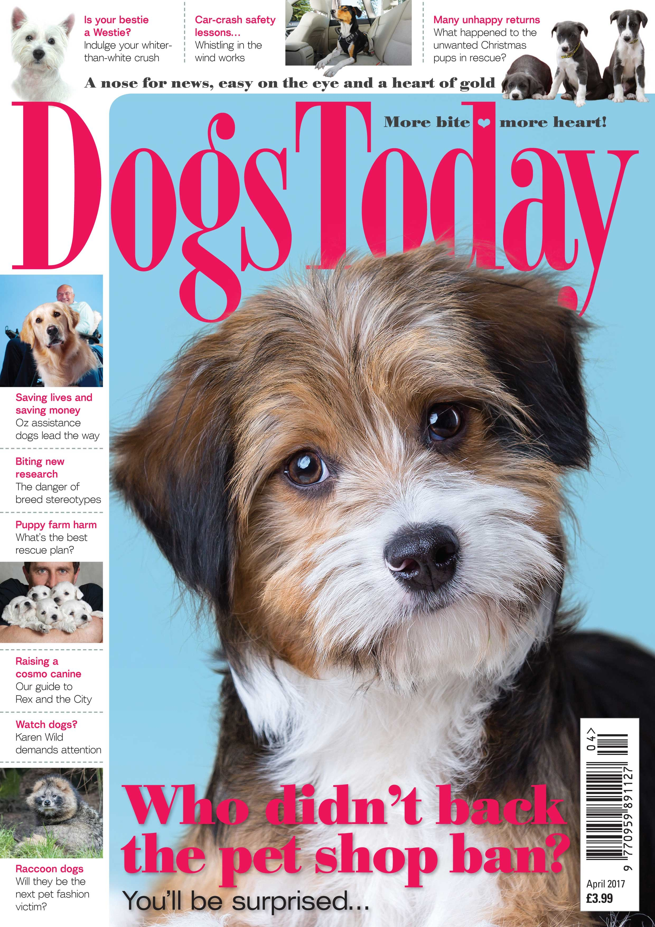 Image result for The Best Pets Magazines Around