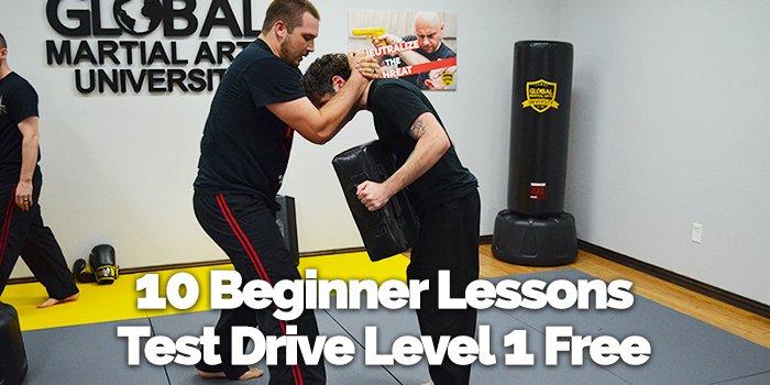 Black Belt at Home - A Global Online Martial Arts University